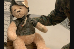 Bear included with military care package